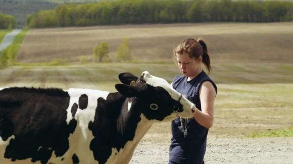 Le plancher des vaches